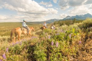 guided trail rides in Idaho, Idaho trail rides, horseback tours, scenic trail rides