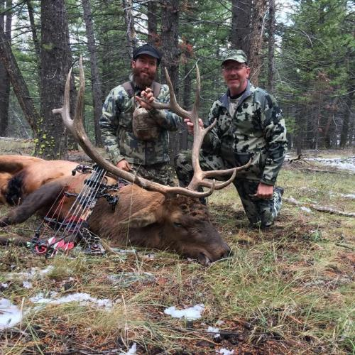 Fully Guided Archery Elk Hunts