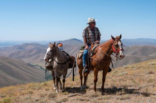 Pack Horse, guided trail rides