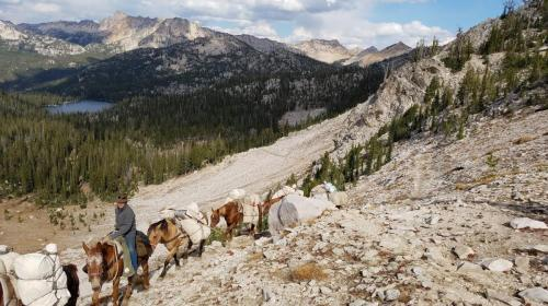 Back Country Pack Trips